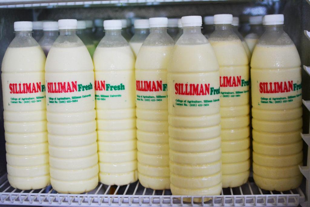 シリマン大学 牛乳 silliman university milk