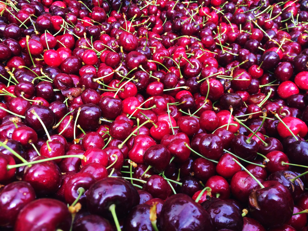 reid fruits パッキング ソーティング