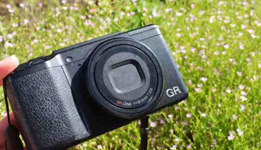 ワーホリ行くなら小さめのカメラを持って行くべき!これからカメラを買おうとしている人へ!